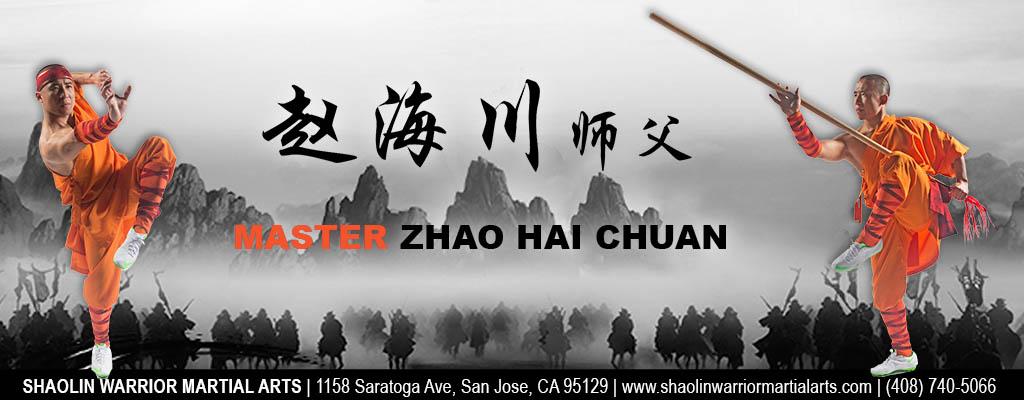 Kung Fu Master Zhao