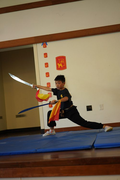Double Shaolin Swords